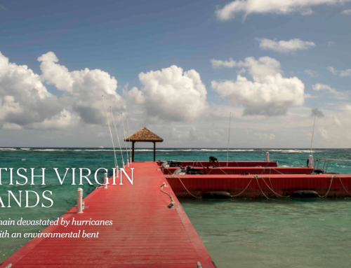 The British Virgin Islands – #2 of places to visit in 2020